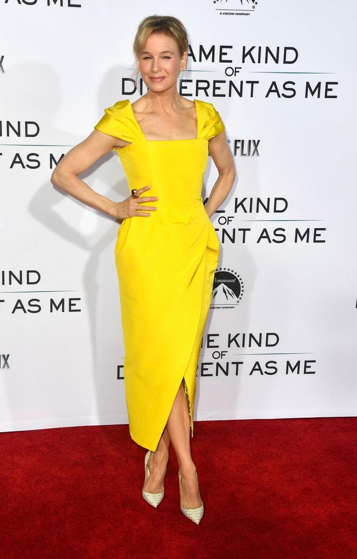 Renée Zellweger na premiéře filmu Same Kind Of Different As Me, 2017 Autor: Getty Images