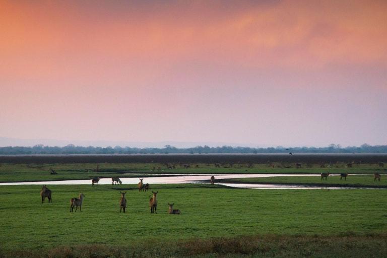 Gorongosa, Mozambik