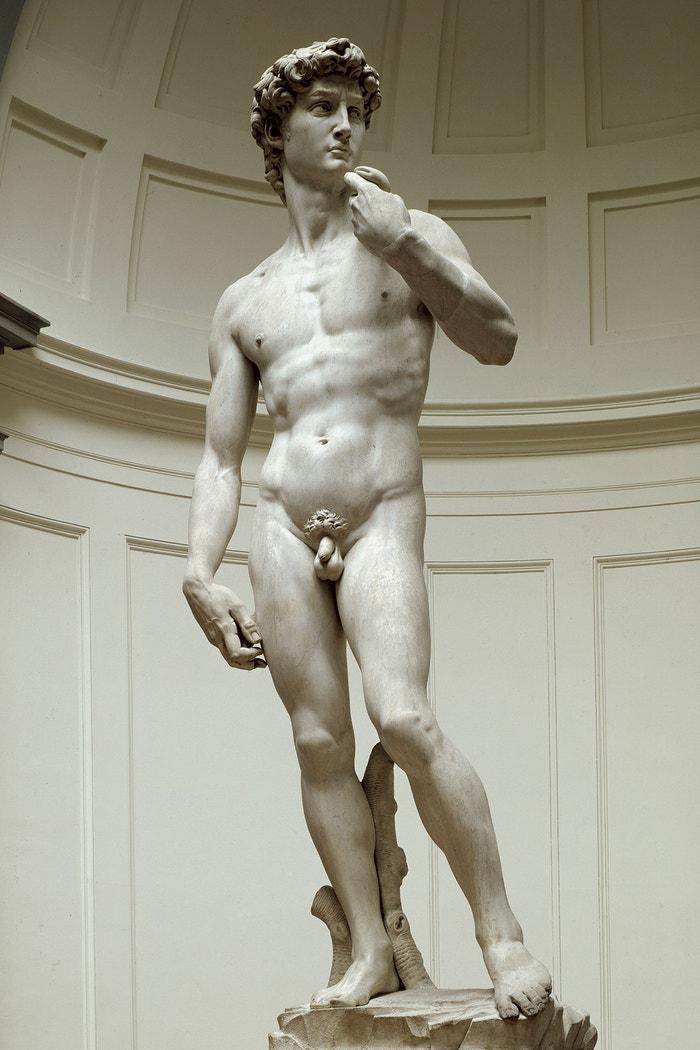 David, Michelangelo Buonarroti, 1504, Galleria dell'Accademia, Florencie