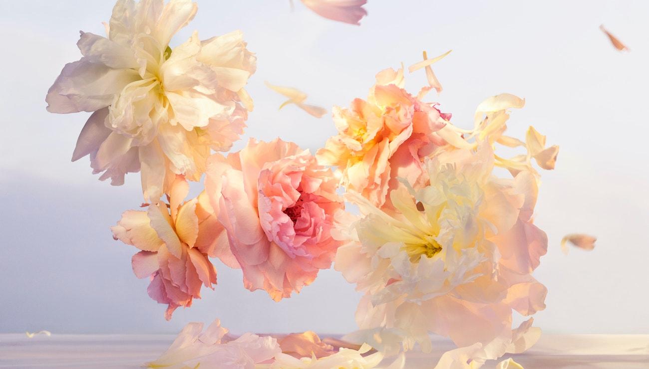 Nová kolekce parfémů Louis Vuitton boří všechna pravidla