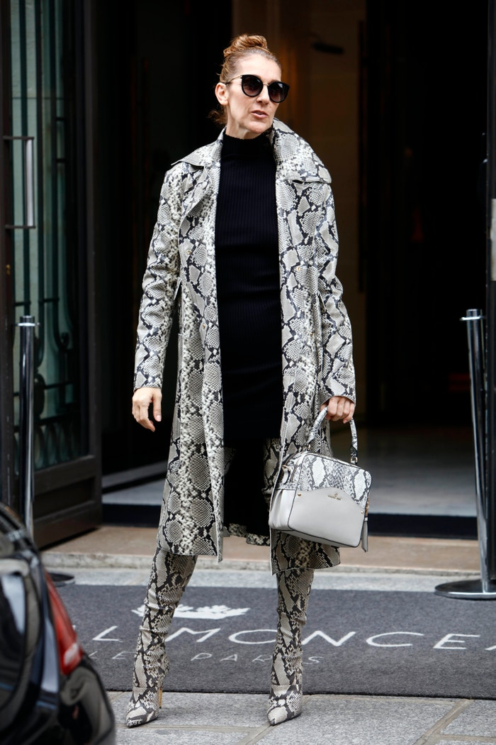 Céline Dion v modelu Balmain Autor: NurPhoto (Getty Images)