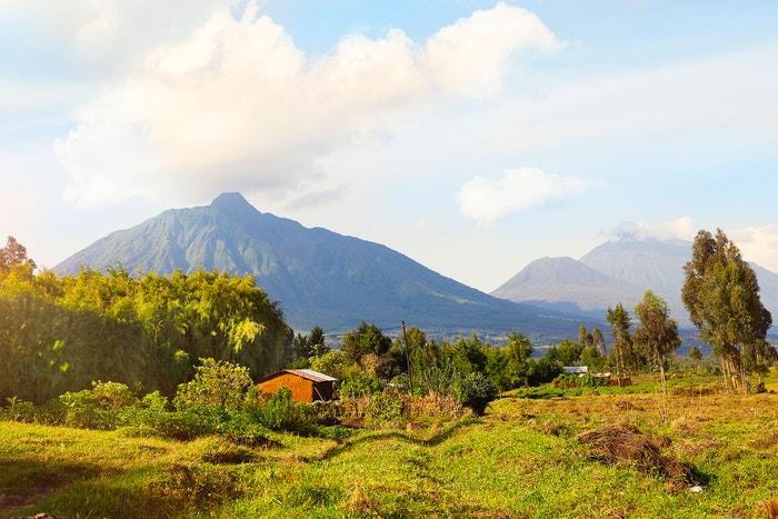 Rwanda, Virunga