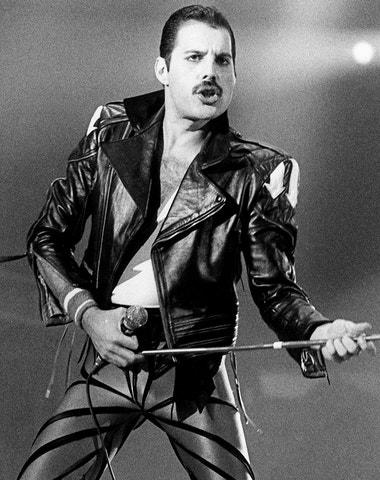 Fashion Queen Freddie Mercury