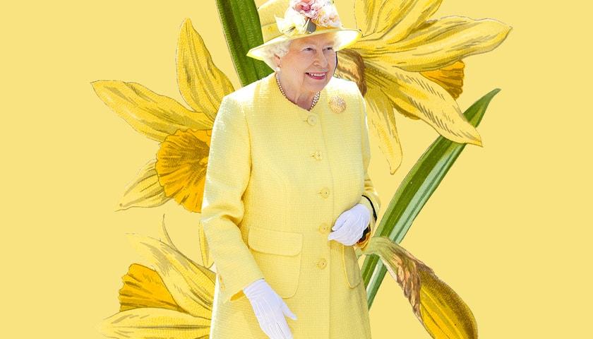 Královské rozkvétání. Evoluce šatníku Alžběty II.